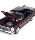 rc002_rcmint_65galaxie_openhood_setd